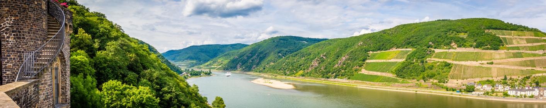 Wein aus Rheingau